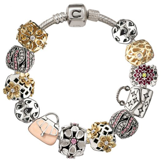 a chamilia bracelet for charms guide