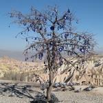 Nazar boncuk tree